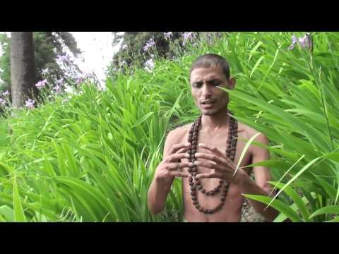 Tripur Sundari Lalitamba Shri Vidya Rahasya
