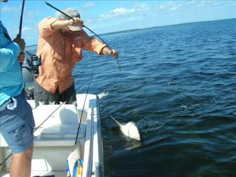 Flamingo fishing with Pop   Bull Shark Breaks rod 2009