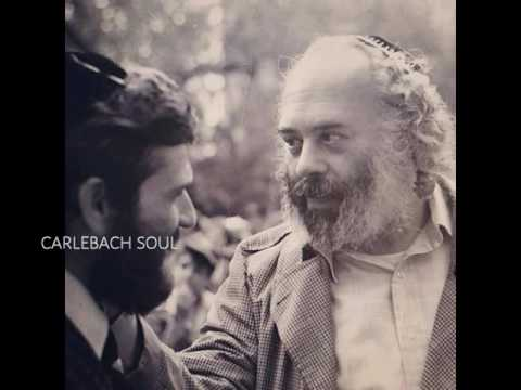 Reb Shlomo on Shlach - Gevalt How Does One Make It In This World