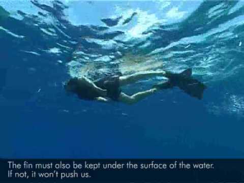 I Consigli Di Umberto Per Fare Snorkeling
