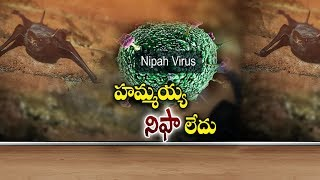 26th May 2018 - Daily Latest Telugu News