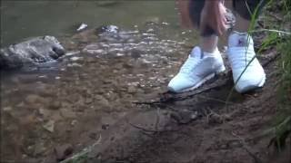 wet sneakers: reebok classic in the creek