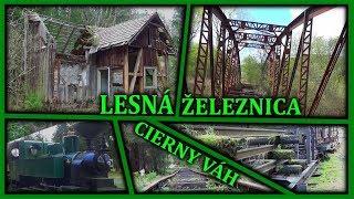Stratena Povazska Lesna Zeleznica - Liptov - Ivan Donoval - Dokument