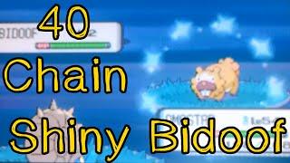 Live Shiny Bidoof in Pokémon Pearl 40 Chain (+ evolution)