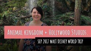 Animal Kingdom + Hollywood Studios | Sep 2017 - Walt Disney World Trip