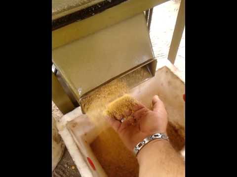 Moliendo granos - Molino de trigo ...