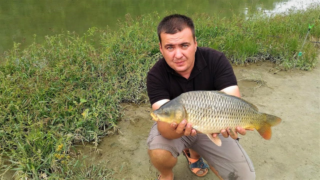 рыбалка видео на сало