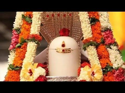 Lord Shiva - Nalla Shivarathri - Devotional Tamil Songs