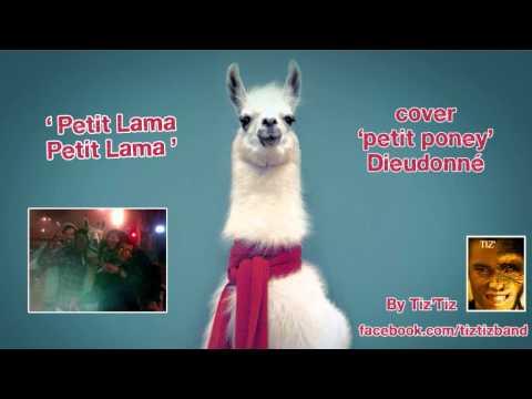Petit Lama – soutien aux 5 bordelais – Tiz'Tiz cover Dieudonné