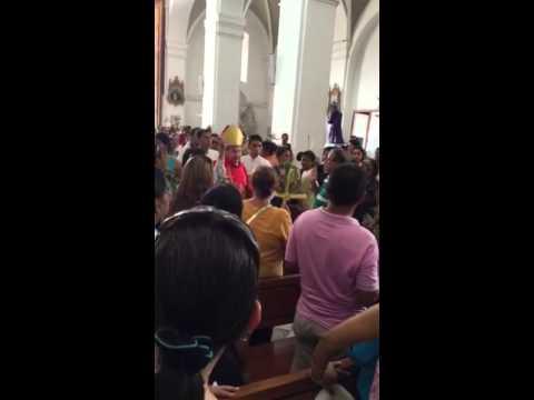 Domingo de Ramos en Santa Marta