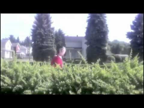 Motosierra - Imprudente forma de cortar los setos del jardin