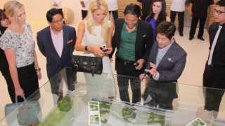 Paris Returns: Looking Back On Paris Hilton