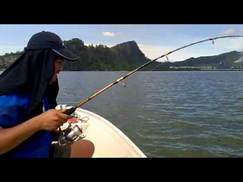 memancing kerapu