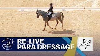 RE-LIVE Para-Dressage – Grade I Individual | FEI World Equestrian Games 2018