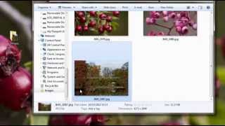 GIMP Tutorial - Watermark Photos