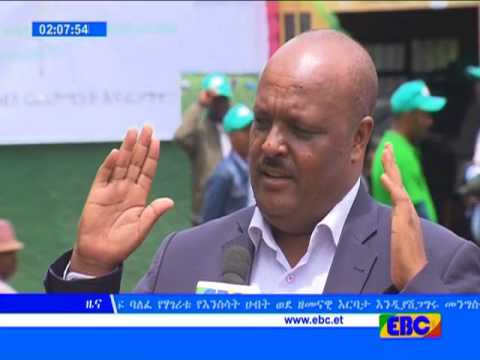 Amharic eve news from ebc August 06 2017