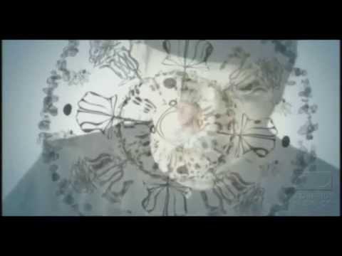 Bidadari Syurga I'tiraf Subhanallah Istighfar Dan 9 Lagu Lainya Nonstop  Uje video