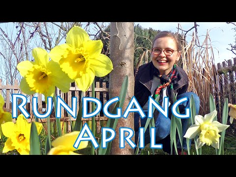 Gartenrundgang März-April 2016  - The Krauts
