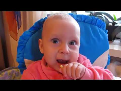 most funniest baby videos compilation 2017