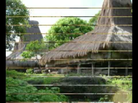 INDONESIA SUMBA ISLAND PICTURES