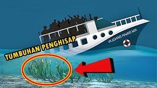 Download Lagu 4 Misteri Dan Fakta Di Danau Toba, No. 1 & 4 Tak Banyak Orang Tahu Gratis STAFABAND