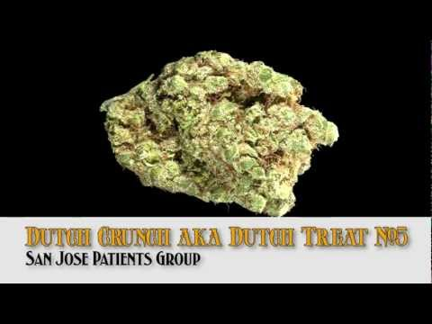 HIGH TIMES 2013 LA Medical Cannabis Cup -- Strain Entries