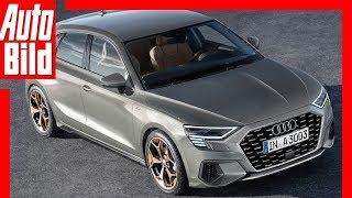 Zukunftsaussicht: Audi A3 (2019) Details/Erklärung