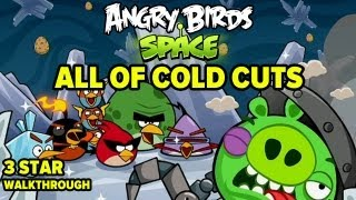 Angry Birds Space_ Cold Cuts All Levels!