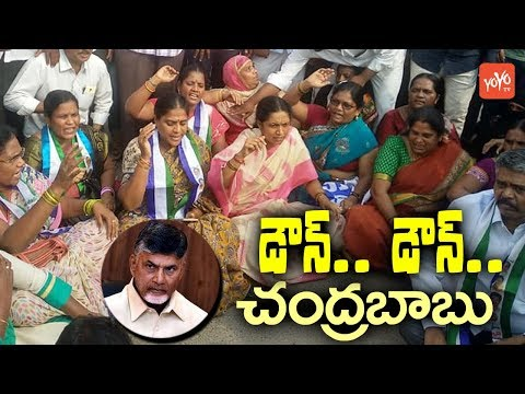 MLA Gowru Charitha Reddy Protest Against To AP CM Chandrababu | Telugu News |  YOYO TV Channel