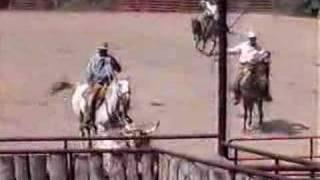 ranch roping - houlihan head catch