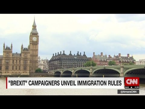 Brexit campaigners unveil immigration rules