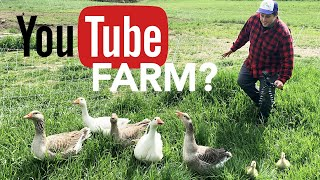 Gold Shaw Farm Grows YouTube Views in Peacham [Stuck in Vermont 613]