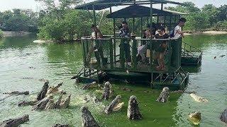 Most DANGEROUS Tourist Locations With Dangerous Animals!