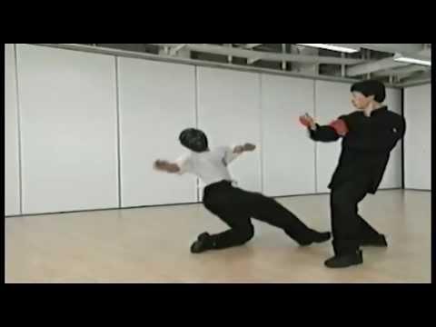 Preview - Samuel Kwok - Wing Chun Vol 1 - SIU LIM TAO