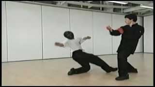 Preview - Samuel Kwok - Wing Chun Vol 1 - SIU LIM TAO