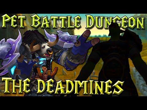Pet Battle Dungeon: The Deadmines - Pokračování! - Návod/Příběh - World of Warcraft: Legion [CZ]