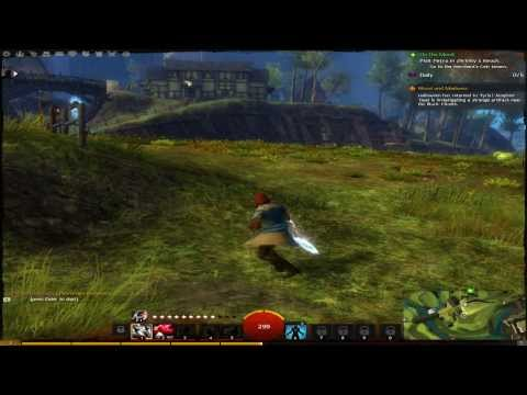 Guild Wars 2 on NVIDIA GeForce GT 640 2GB Max Settings