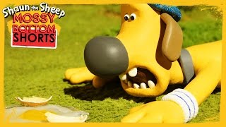 Bitzer Over Easy - Shaun the Sheep [Full Episode]