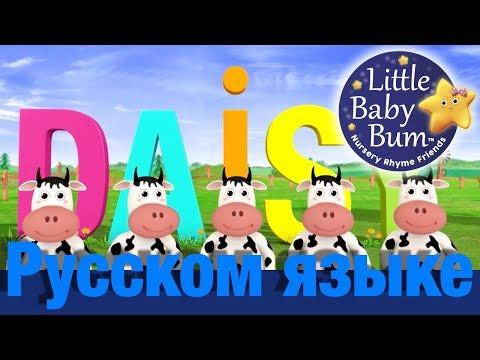 ДЭЙЗИ | детские песни | LittleBabyBum