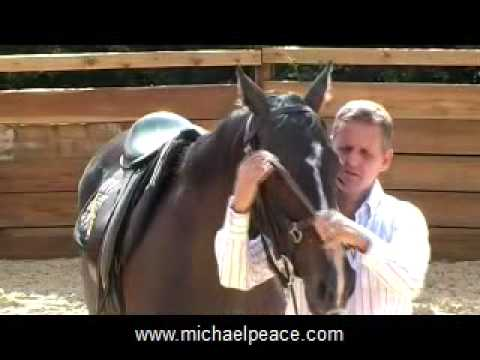 Michael Peace - Problem Horse Trainer - Saddling, Bridling and Long-Reining