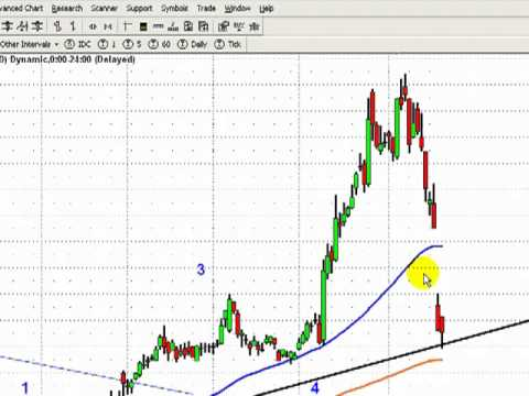 the elliott wave practitioner, 22 January 2011, AIG, PCK Muni Bond Fund