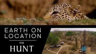 Filming A Leopard Hunt - The Hunt - #EarthOnLocation Vlog - BBC Earth Unplugged