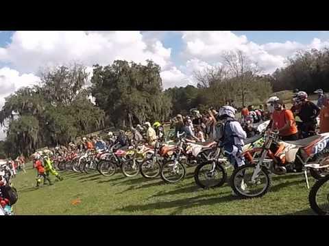Josh Race 2