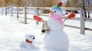 How To Build A Snowman ( Creative Ideas )
