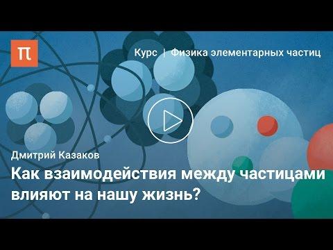 Фундаментальные взаимодействия — Дмитрий Казаков