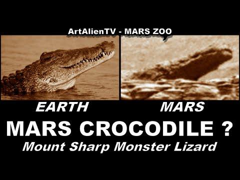 MARS CROCODILE - Mount Sharp Monster Lizard Found Near Water. ArtAlienTV MARS ZOO 1080p