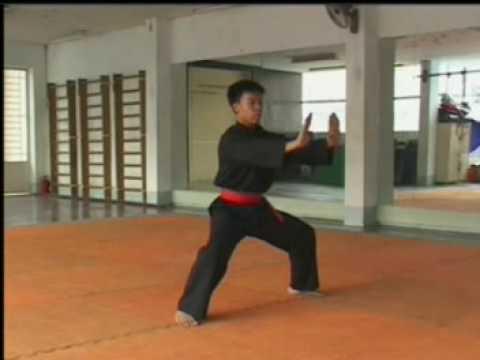 Khai căn long bộ quyền - Thieu lam noi quyen Kim Ke - Tay son nhan