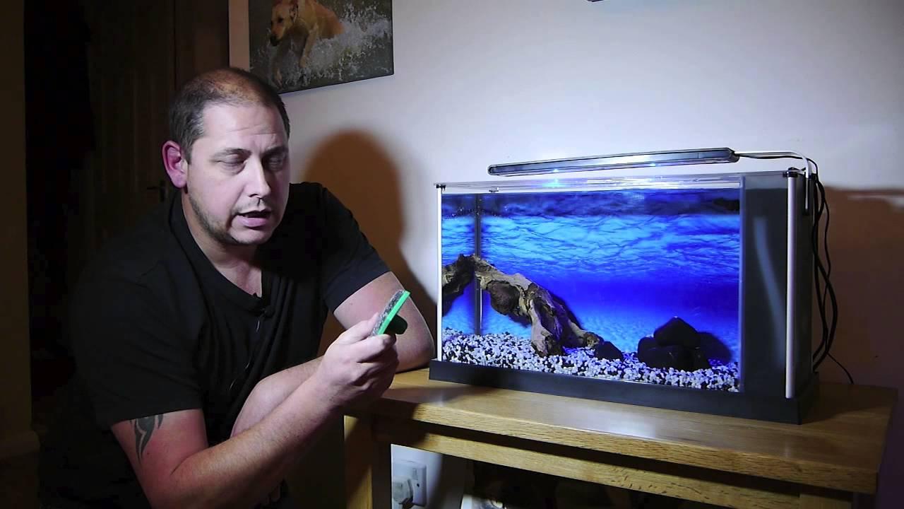 Fluval Spec V Fish Tank review by GRVO TV - YouTube Fluval Fish Tank
