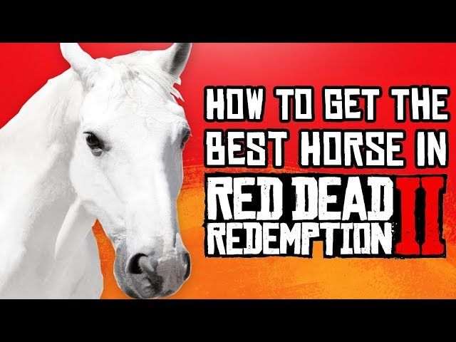 Red Dead Redemption 2 | How to Get the BEST Horse (Fast & Easy Guide)