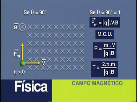 B 09 - Campo Magnético e Dinâmica de uma Partícula - Física - Vestibulando Digital